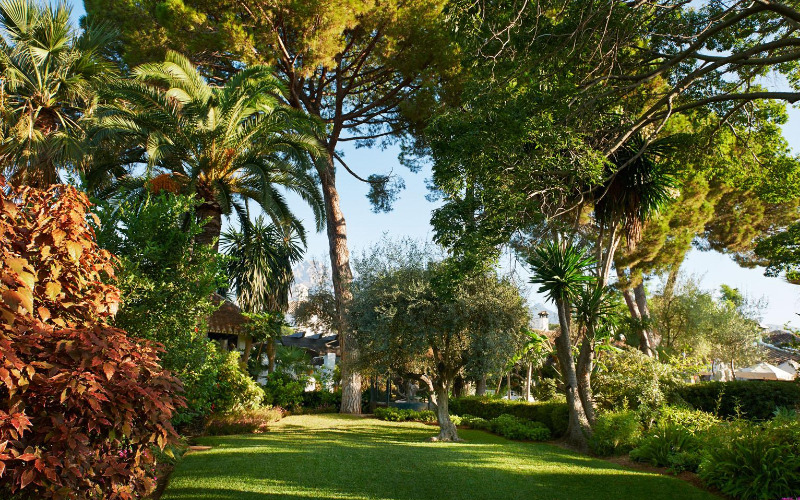 THESE streets on Spain's Costa del Sol are having €100,000 worth of new trees planted